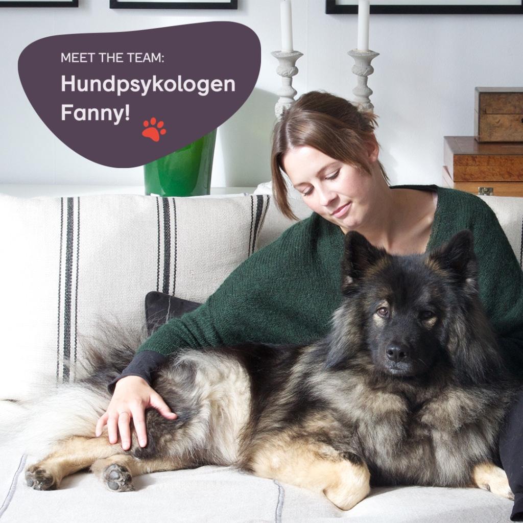 Hundpsykologen Fanny