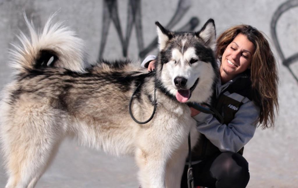 Allt du behöver veta om hunddagis! Intervju med Sara Viforr